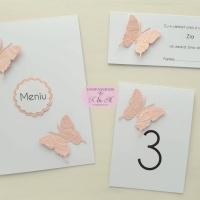 Meniu, numar masa, plic de bani cu fluturi roz pentru botez, cod 226