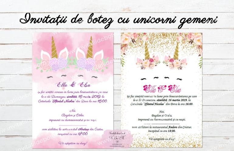 Invitatii unicorni gemeni1